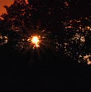 Early Morning Sun Burst Poster