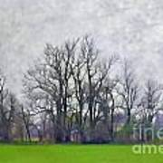 Early Spring Landscape  Digital Paint Poster