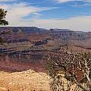 East Rim Grand Canyon Poster