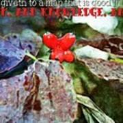 Ecclesiastes 2 26 Poster
