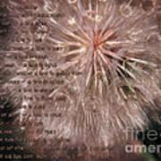 Ecclesiastes Seasons Poster