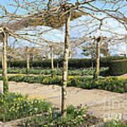 Eden Spring Garden Poster