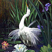 Egret And The Butterfly Poster