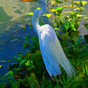 Egret In Blue Poster