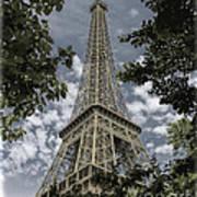 Eiffel Through Trees Poster