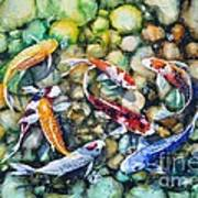 Eight Koi Fish Playing With Bubbles Poster