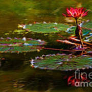 Electric Lily Pad Poster