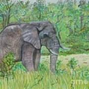 Elephant At Kruger Poster