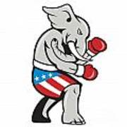 Elephant Mascot Boxer Boxing Side Cartoon Poster