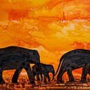 Elephants At Sunset Poster