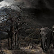 Elephants Of The Serengeti Poster