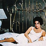 Elizabeth Taylor In Cat On A Hot Tin Roof  Poster