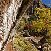 Emerald Falls Zion National Park Poster