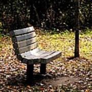 Empty Bench Meditation Spot Poster