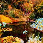 Enchaned Blue Lily Pond Poster
