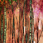 Enchanted Forest Poster by Stephen Norris