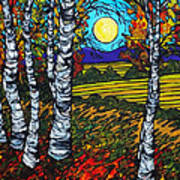 End Of Summer Birches Poster
