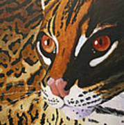 Endangered - Ocelot Poster