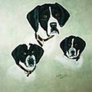 English Setter Momma And Pups Poster