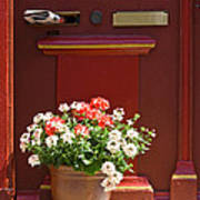 Entrance Door With Flowers Poster