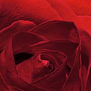 Enveloped In Red Poster