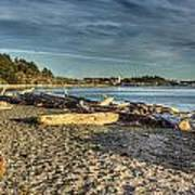 Esquimalt Lagoon - Logs And Beach Poster