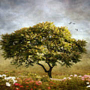 Eternal Spring Poster