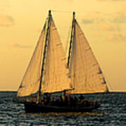 More Sails In Key West Poster