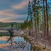 Evening On The Banks Of A Beaver Pond Poster by Omaste Witkowski