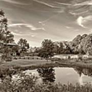 Evening Pond Sepia Poster