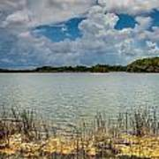 Everglades Lake 6930 Poster by Rudy Umans