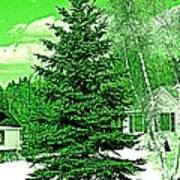 Evergreen Poster