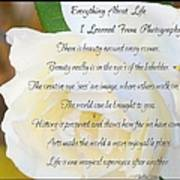 Everything About Life From Photogaphy Poster