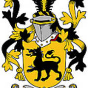 Ewers Coat Of Arms Irish Poster
