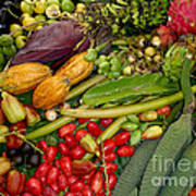Exotic Fruits Poster