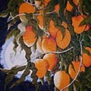 Exotic Harvest Poster