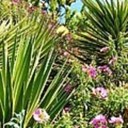 Exotic Hillside Garden Poster