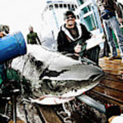 Expedition Great White Crew Conducts Poster