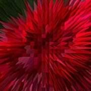 Exploding Rose Poster