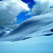 Eye Catcher In Snow Poster