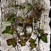Face In The Garden Poster