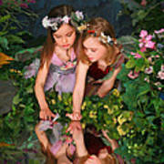 Fairies And Dragonflies Poster