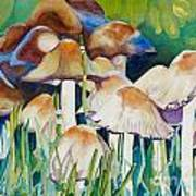 Fairy Ring Poster