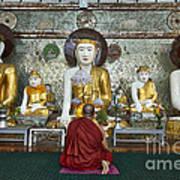 faithful Buddhist monk praying at Buddha Statues in SHWEDAGON PAGODA Poster