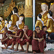 faithful Buddhist monks siiting around Buddha Statues in SHWEDAGON PAGODA Poster