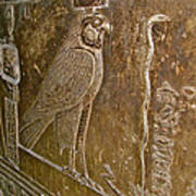Falcon Symbol For Horus In A Crypt In Temple Of Hathor In Dendera-egypt Poster