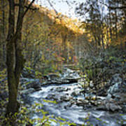 Fall Along Citico Creek Poster