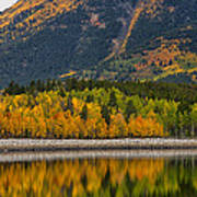 Fall Along The Forebay Poster