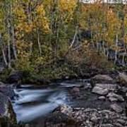 Fall At Bishop Creek Poster