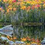 Fall At Sandy Stream Pond Poster